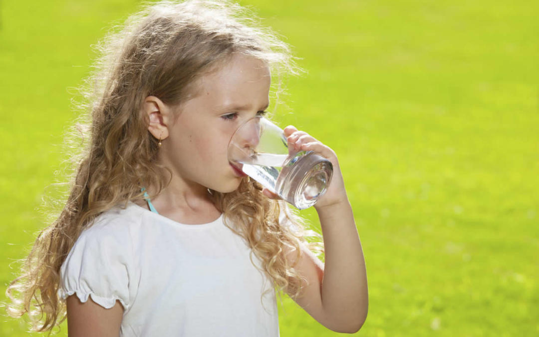 Have you heard of Ionized Alkaline drinking water?